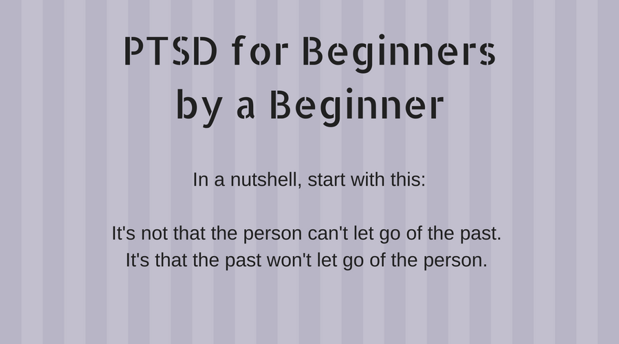 PTSD for Beginners by a Beginner