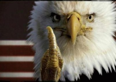 once a soldier FU PTSD eagle